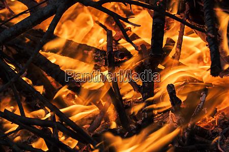 close up of burning branches alabama