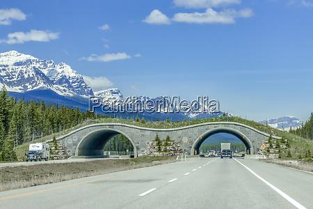 banff national park alberta canada the