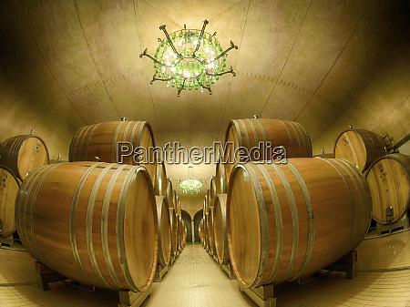 italy tuscany wine barrels aging