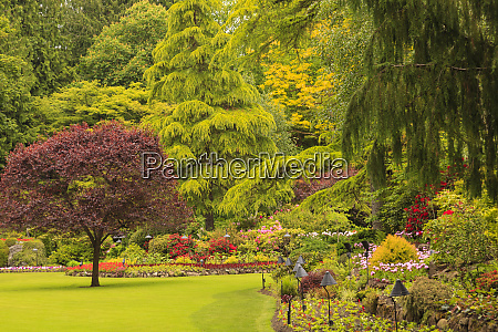 butchart gardens in june near victoria