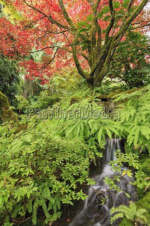 autumn colors british columbia canada