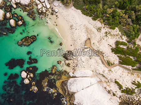 aerial view of natural reserve penguins