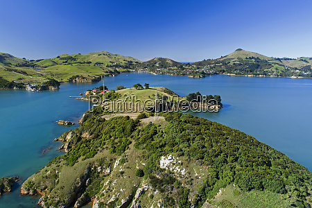 quarantine island portobello otago peninsula and