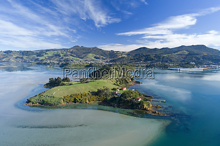 quarantine island and otago harbour dunedin
