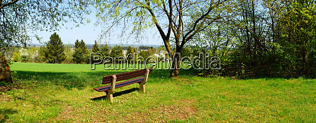 rest area with bench in the