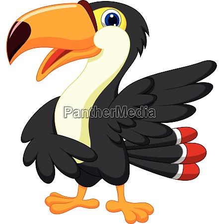 toucan bird cartoon