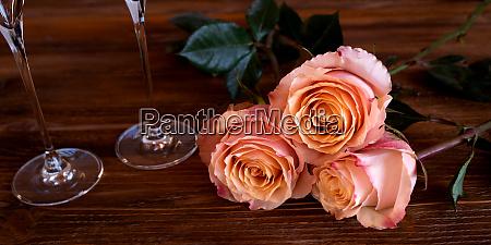 romantic still life with tender roses