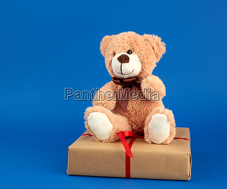 beige teddy bear and a box