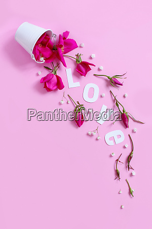spring composition with pink flowers and