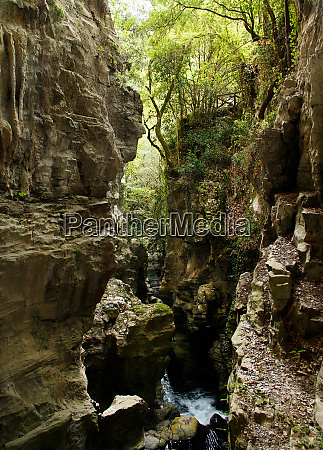 resurgence of bussento river in the