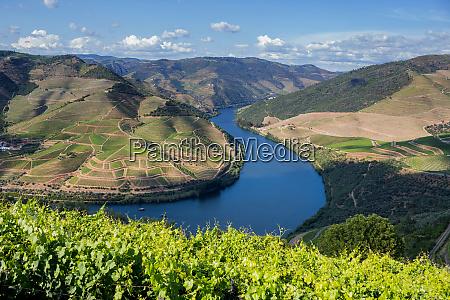 douro valley landscape
