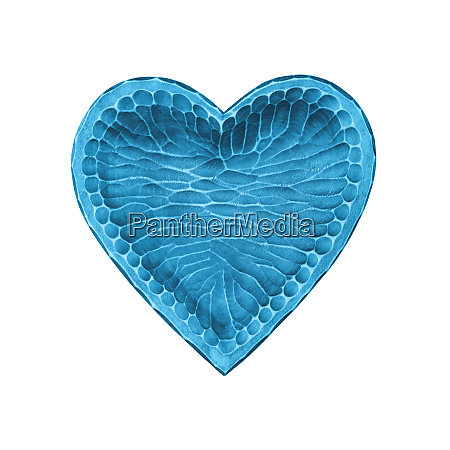 blue wooden heart shaped bowl isolated
