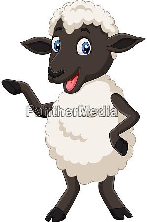 cute sheep cartoon posing isolated on