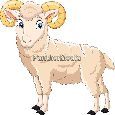 cartoon funny goat isolated on white