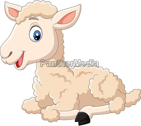 cute lamb cartoon sitting isolated on