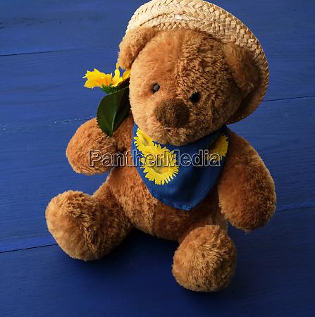teddy bear sitting on a blue