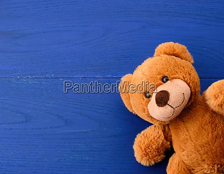 brown teddy bear on a blue