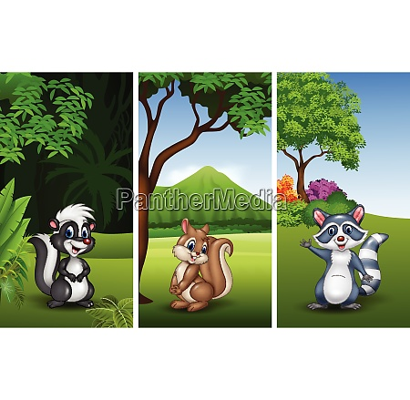 set of three funny animals with