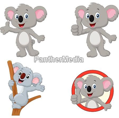 cartoon happy koala collection set