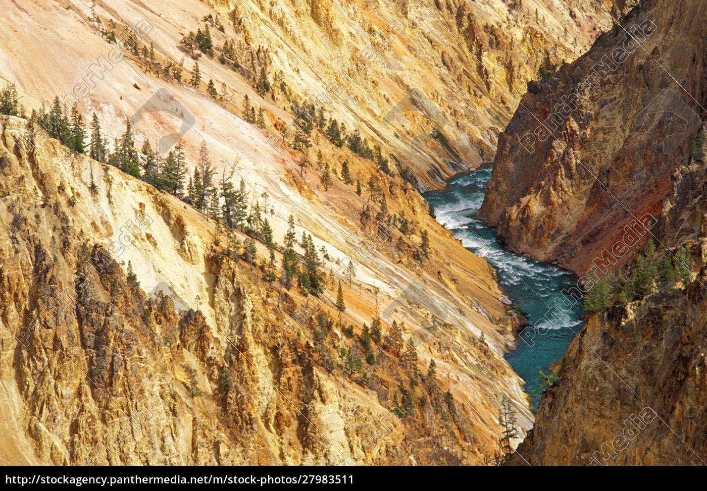the, yellowstone, river, and, canyon, from - 27983511