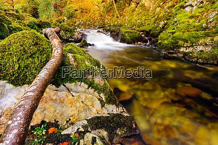 cascades on a mountain stream with