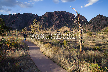 hiking trail in chisos mountains at