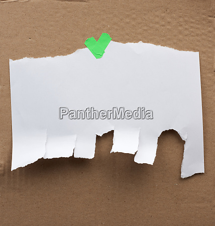 blank paper ad with torn edges