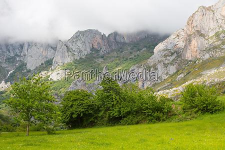 picos, de, europa - 27992618