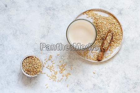 vegan rice milk non dairy alternative