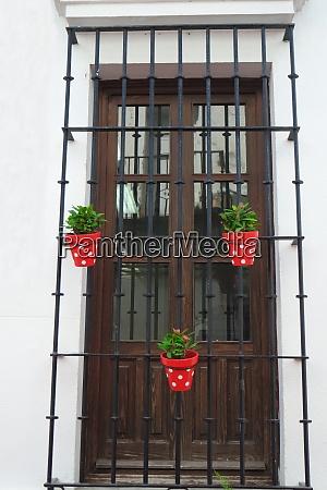 flower pots on wrought iron lattice