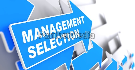 management selection business background