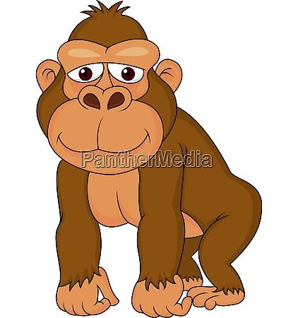 funny gorilla cartoon