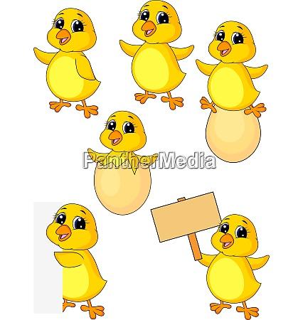 chicken cartoon set