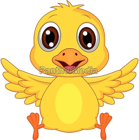 cute baby duck cartooncute baby duck