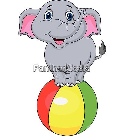 cute circus elephant circus cartoon