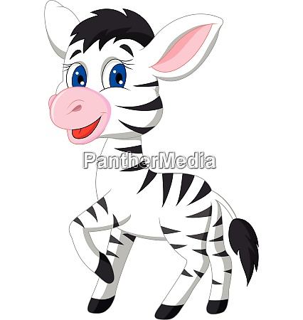 cute zebra cartoon