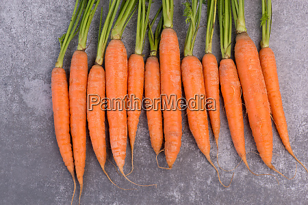 fresh carrots on a grey textured