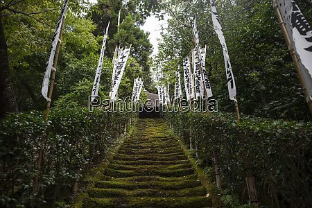 moss stairs to sugimoto dera temple