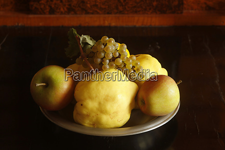 still life with quinces apples and