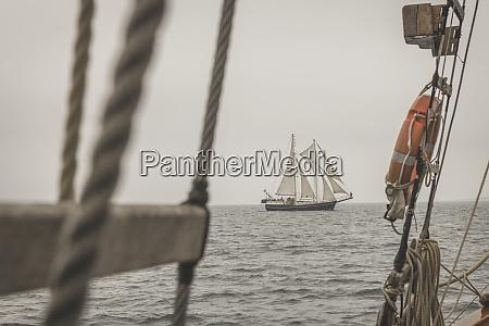 denmark baltic sea traditional sailing ship