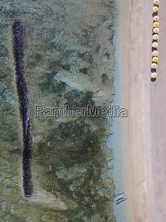 aerial view of beach at bali