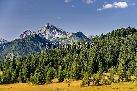 austria, , tyrol, , scenic, view, of, tannheim - 28031314