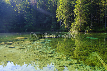 scenic view of badersee lake at