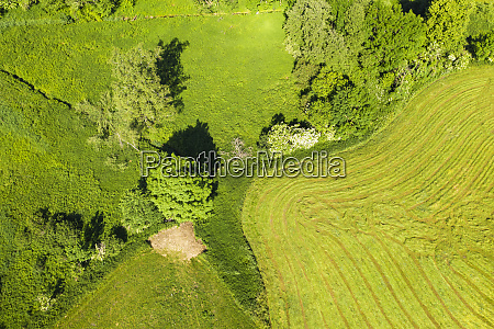 aerial view of admonished meadow and