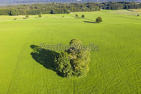 germany upper bavaria icking green landscape