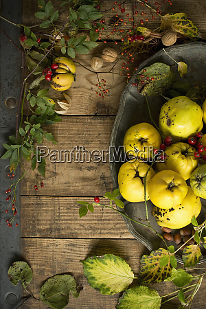 bowl of freshquinces winter cherries rose
