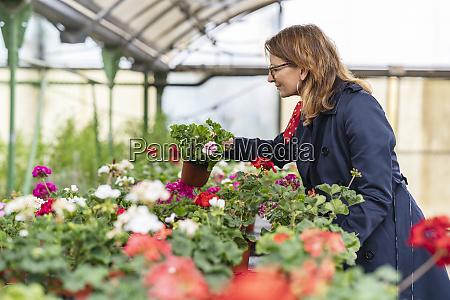 woman buying flowers in plant nursery