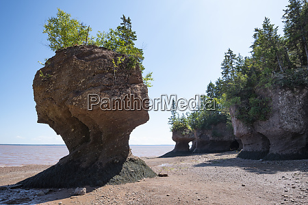 canada new brunswick hopewell rocksformation at
