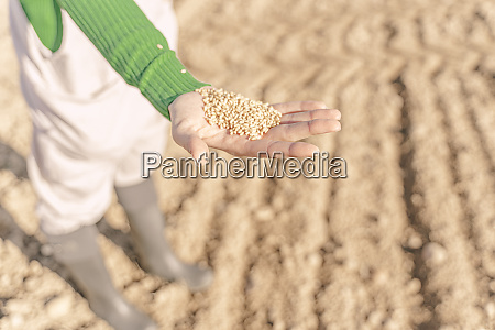 young woman sowing field for the