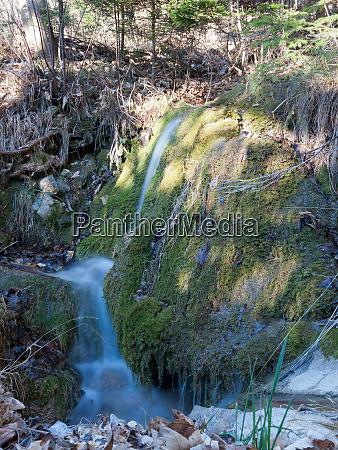 moss cataract and sun streams